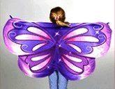 Cozy Wings