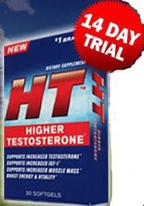 Higher Testosterone