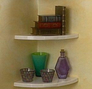 Insta Shelves