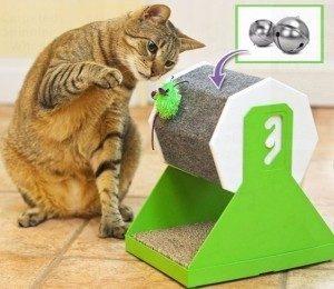 Meow Go Round