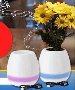 Smart Vase