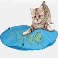CATch-It Cat Toy Review
