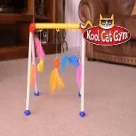 Kool Cat Gym Toy Review